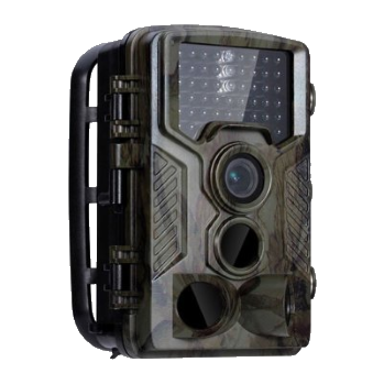 Trail Camera & Internet